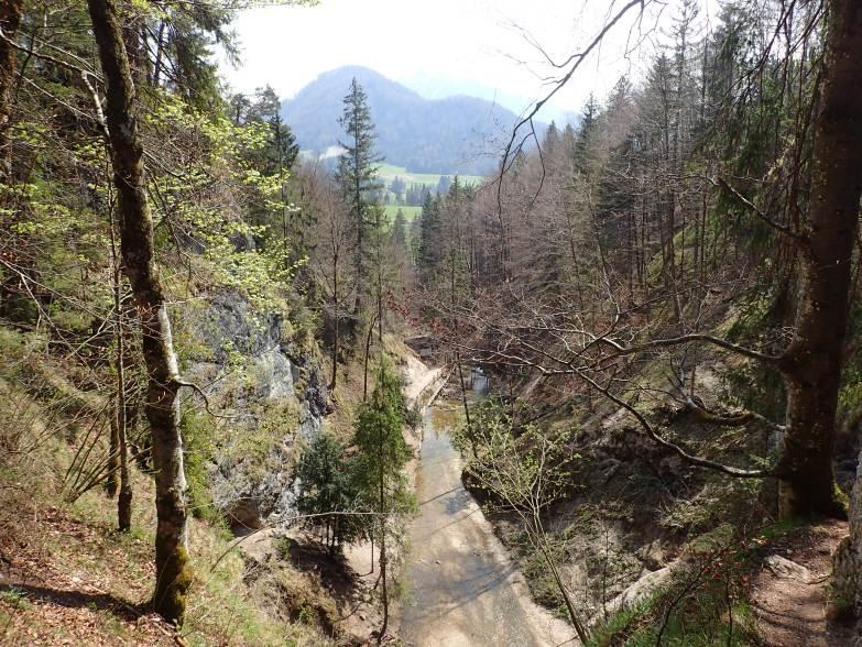 Foto: Manfred Karl / Wandertour / Höhenweg Plötz - Wieselberg / Oberhalb vom Wasserfall / 08.05.2021 07:41:45