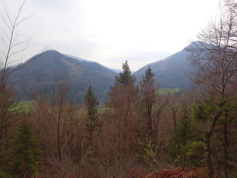 Foto: Manfred Karl / Wandertour / Höhenweg Plötz - Wieselberg / Watzmannblick - heute leider nicht / 08.05.2021 07:37:49