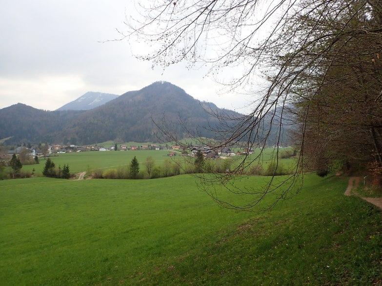 Foto: Manfred Karl / Wandertour / Höhenweg Plötz - Wieselberg / Ebenau / 08.05.2021 07:37:01