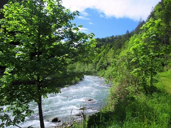 Foto: Andreas Koller / Klettersteigtour / Koschlak Klettersteig Bad Eisenkappel (720m) / Vom Parkplatz an der Vellach kurzer Zustieg / 07.06.2021 00:59:34