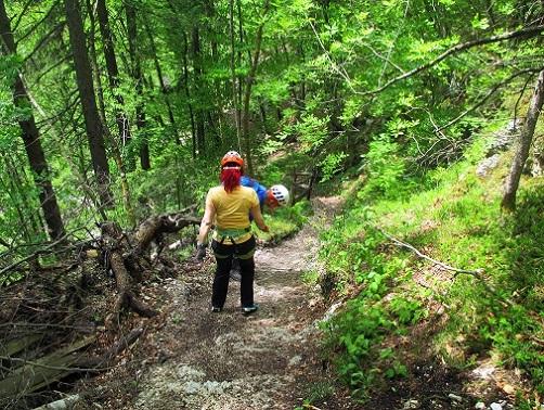Foto: Andreas Koller / Klettersteigtour / Koschlak Klettersteig Bad Eisenkappel (720m) / Abstieg auf gutem Steig / 07.06.2021 00:53:05