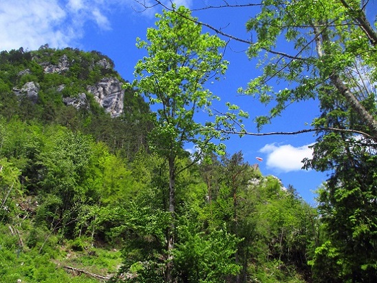 Foto: Andreas Koller / Klettersteigtour / Koschlak Klettersteig Bad Eisenkappel (720m) / 07.06.2021 00:52:48