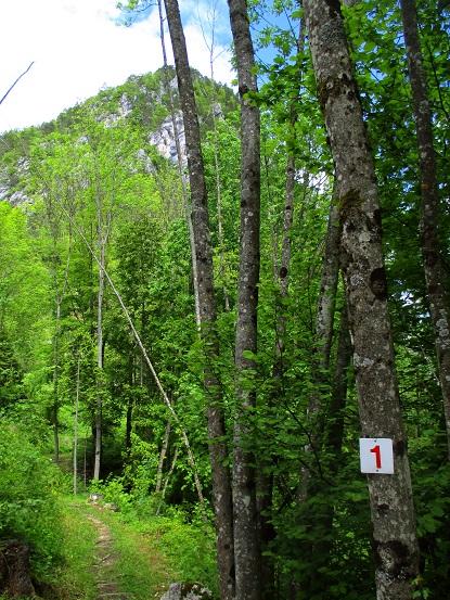 Foto: Andreas Koller / Klettersteigtour / Koschlak Klettersteig Bad Eisenkappel (720m) / 07.06.2021 00:52:42