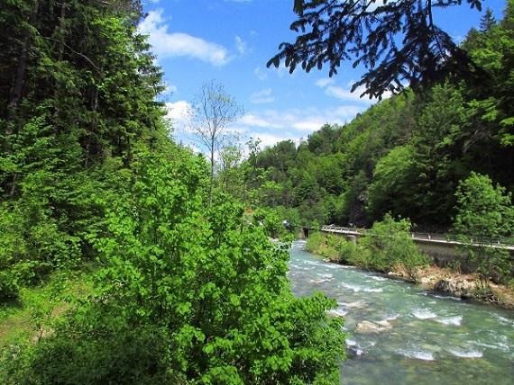 Foto: Andreas Koller / Klettersteigtour / Koschlak Klettersteig Bad Eisenkappel (720m) / Zurück entlang der Vellach / 07.06.2021 00:52:30