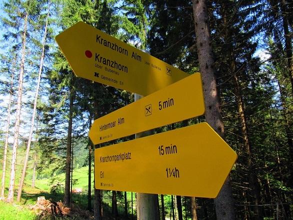 Foto: Andreas Koller / Wandertour / Bio-Tour Kranzhorn (1368m) / 08.06.2021 23:54:40