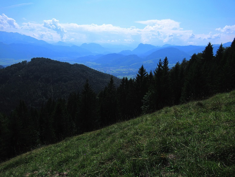 Foto: Andreas Koller / Wandertour / Bio-Tour Kranzhorn (1368m) / 08.06.2021 23:54:01