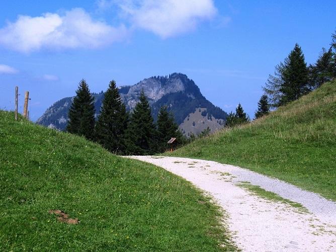 Foto: Andreas Koller / Wandertour / Bio-Tour Kranzhorn (1368m) / 08.06.2021 23:53:35
