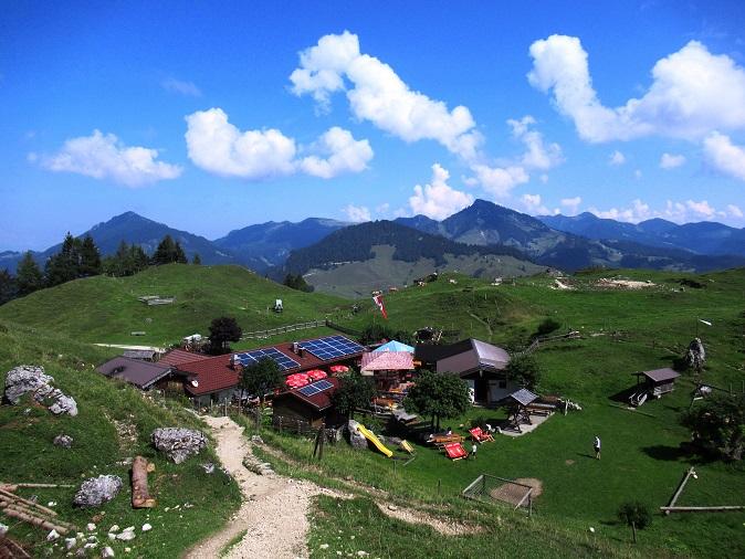 Foto: Andreas Koller / Wandertour / Bio-Tour Kranzhorn (1368m) / 08.06.2021 23:53:11