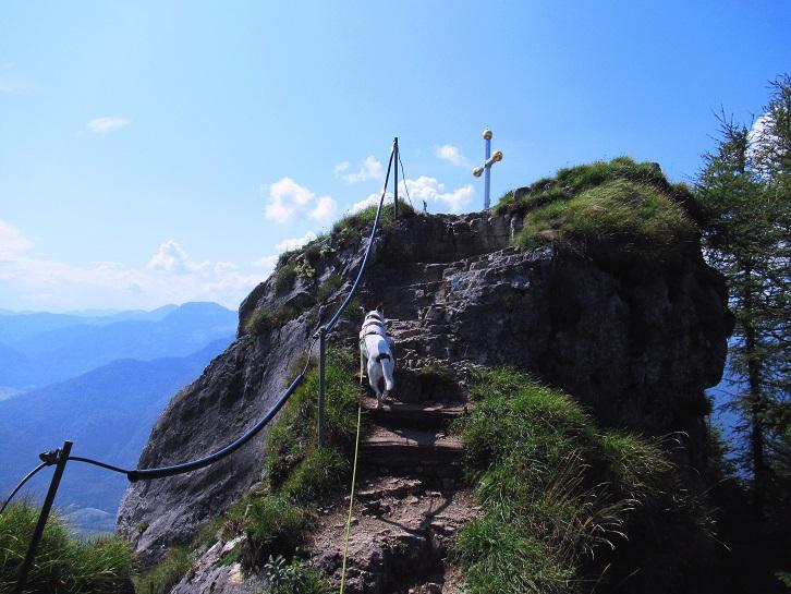 Foto: Andreas Koller / Wandertour / Bio-Tour Kranzhorn (1368m) / Der Gipfel des Kranzhorn ist erreicht / 08.06.2021 23:52:48