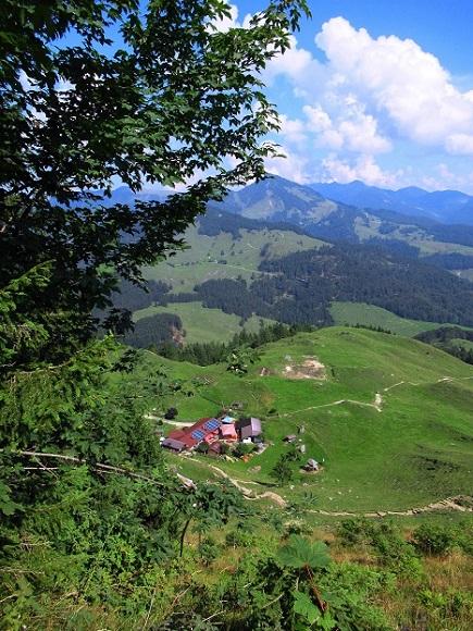 Foto: Andreas Koller / Wandertour / Bio-Tour Kranzhorn (1368m) / Blick hinab zur Kranzhornalm im Abstieg / 08.06.2021 23:50:24