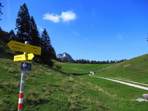 Foto: Andreas Koller / Wandertour / Bio-Tour Kranzhorn (1368m) / 08.06.2021 23:49:07