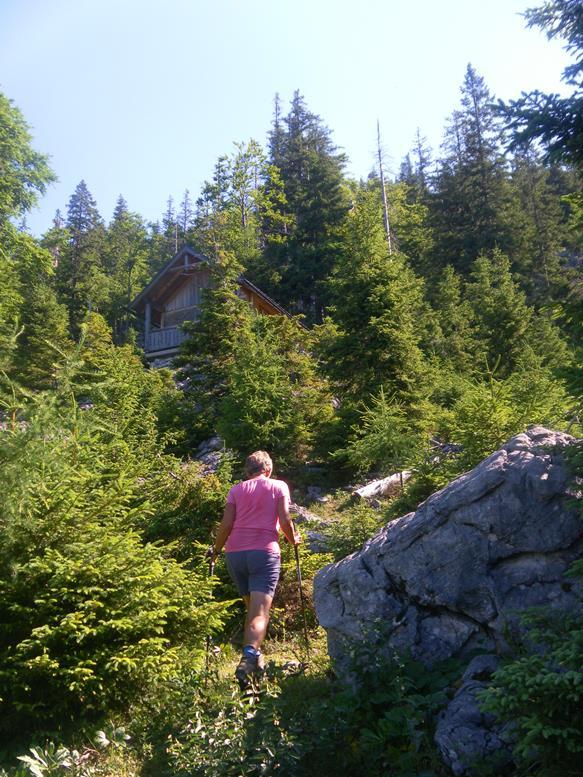 Foto: Wolfgang Lauschensky / Wandertour / Grünalmkogel 1821m über das Gimbachtal / neue Jagdhütte / 10.07.2021 20:42:23