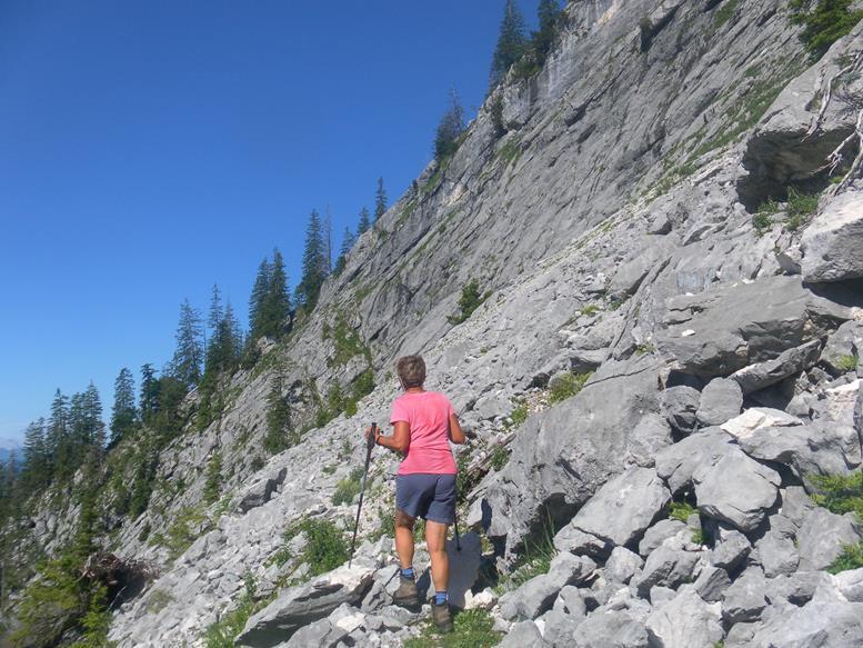 Foto: Wolfgang Lauschensky / Wandertour / Grünalmkogel 1821m über das Gimbachtal / Geröllmulde und Felswand / 10.07.2021 20:42:18
