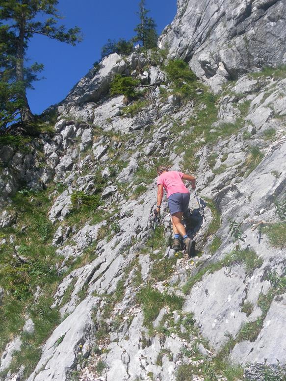 Foto: Wolfgang Lauschensky / Wandertour / Grünalmkogel 1821m über das Gimbachtal / Schrofenrampe durch die Felswand / 10.07.2021 20:42:11