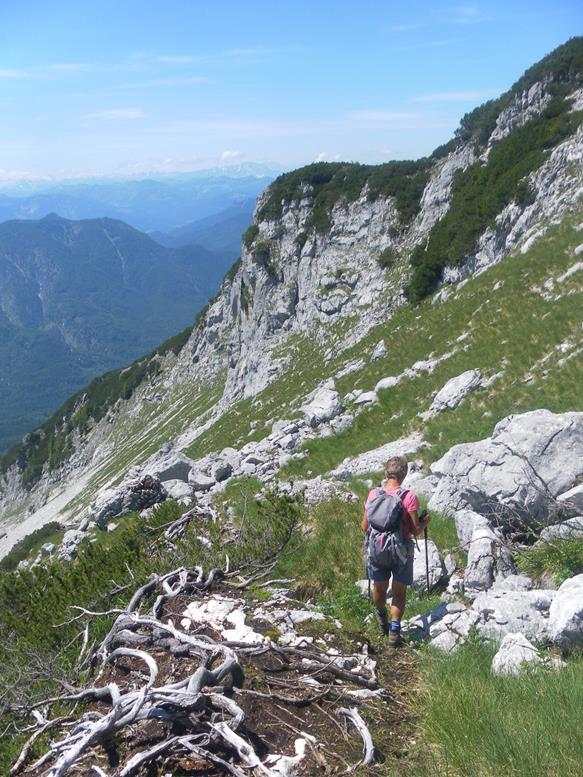 Foto: Wolfgang Lauschensky / Wandertour / Grünalmkogel 1821m über das Gimbachtal / Querung unter der Pfaffengrabenhöhe / 10.07.2021 20:41:28
