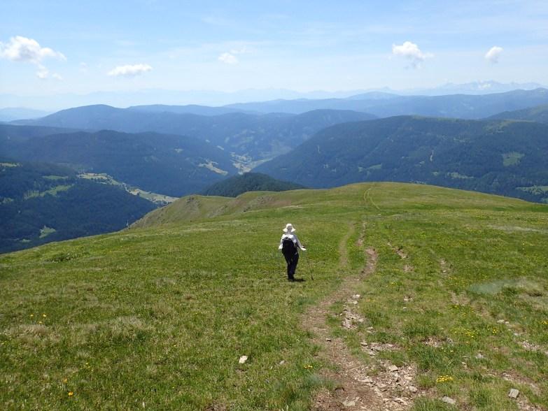 Foto: Manfred Karl / Wandertour / Rinsennock über den Eggenriegel / Abstieg über den breiten Südrücken / 18.07.2021 09:19:45