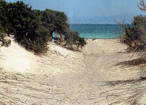 Foto: Rupert Gredler / Wandertour / Chrisi Island Rundtour / Die Abkürzung von der Anlegestelle Zaradustra zur Gold Beach. Im Hintergrund Ierapetra. / 22.07.2021 17:28:02