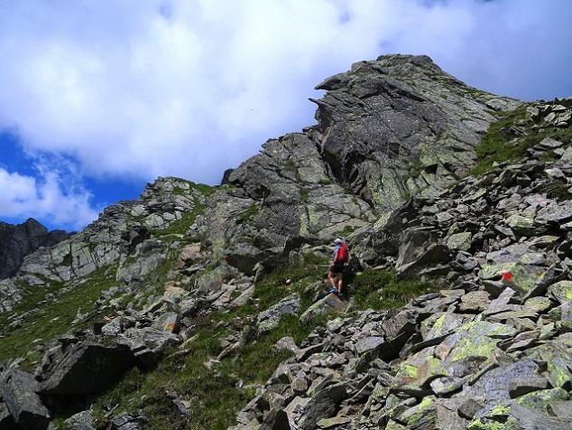Foto: Andreas Koller / Wandertour / Zwölferspitze und Panoramaweg (2562m) / Vom Zwölfernieder zur Zwölferspitze / 07.09.2021 01:35:42