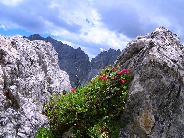 Foto: Andreas Koller / Wandertour / Zwölferspitze und Panoramaweg (2562m) / 07.09.2021 01:30:48