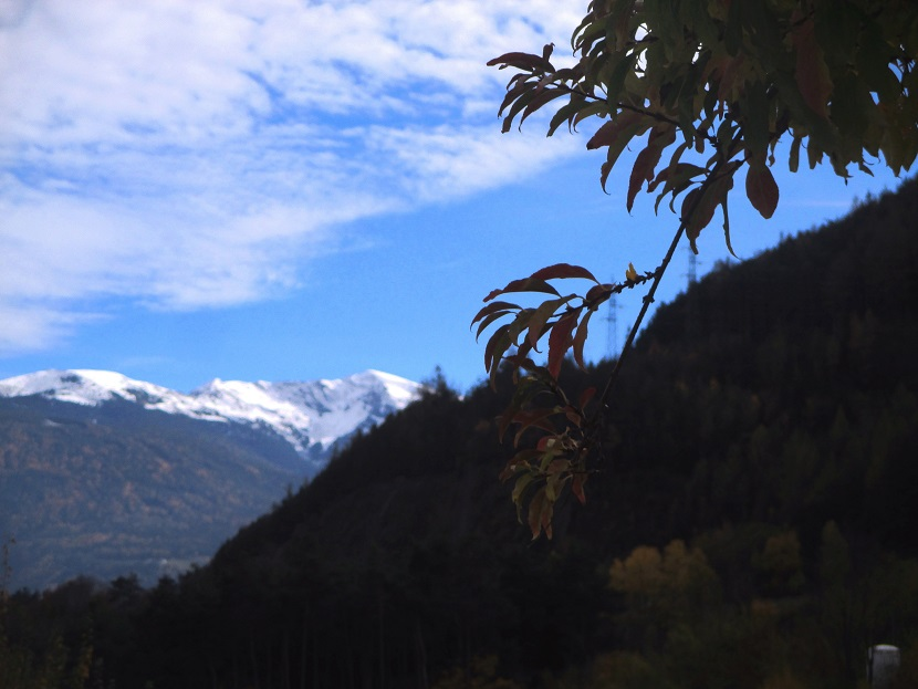 Foto: Andreas Koller / Klettersteigtour / Klettersteig Hohe Festung (825m) / 08.09.2021 00:53:50