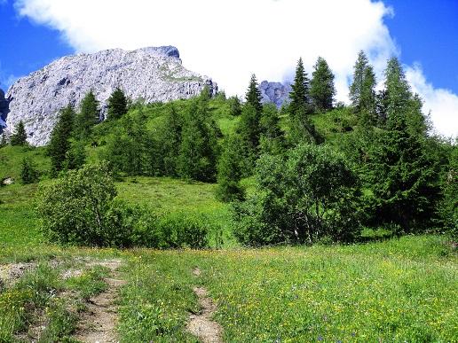 Foto: Andreas Koller / Klettersteigtour / Klettersteig Arzalpenturm und Arzalpenkopf (2372m) / 10.09.2021 17:02:59