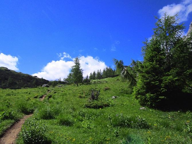 Foto: Andreas Koller / Klettersteigtour / Klettersteig Arzalpenturm und Arzalpenkopf (2372m) / 10.09.2021 17:02:32