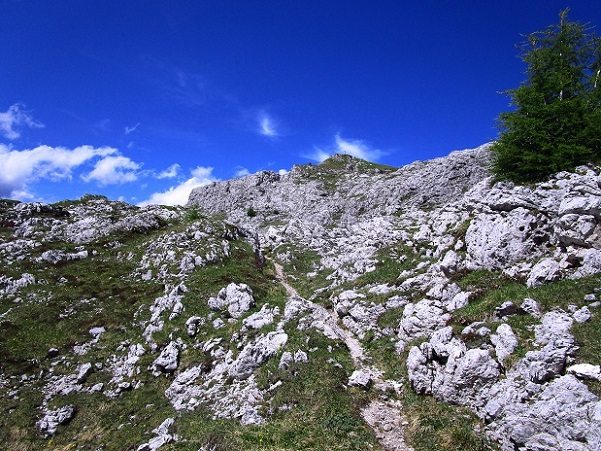 Foto: Andreas Koller / Klettersteigtour / Klettersteig Arzalpenturm und Arzalpenkopf (2372m) / 10.09.2021 16:53:22