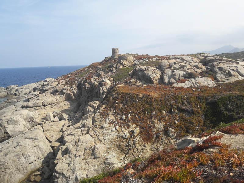 Foto: Rupert Gredler / Wandertour / Von der Punta Spanu nach Calvi / Punta Spanu / 13.10.2021 13:57:26