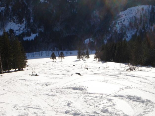 Foto: Manfred Karl / Ski Tour / Über die Gwechenberghütte auf den Sonntagskogel / Aufstieg oberhalb vom Quehenbergbauern / 30.01.2009 23:16:29