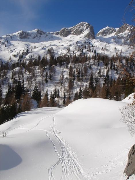 Foto: Manfred Karl / Ski Tour / Über die Gwechenberghütte auf den Sonntagskogel / Blick zum Sonntagskogel vor der flachen Querung zur Gwechenberghütte / 30.01.2009 23:14:35