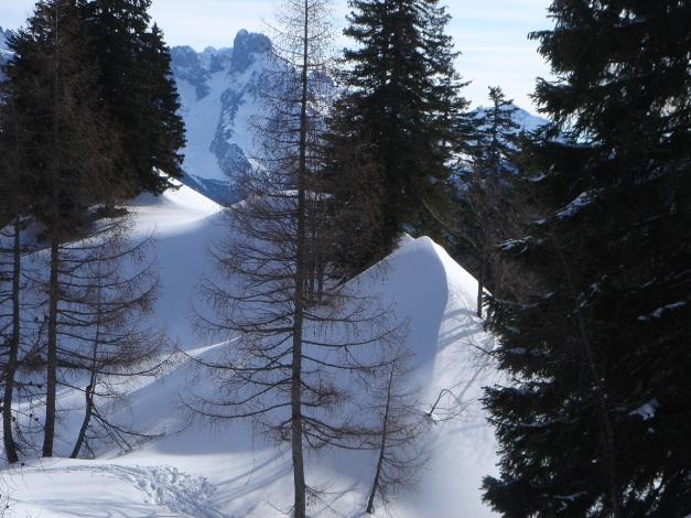 Foto: Manfred Karl / Ski Tour / Über die Gwechenberghütte auf den Sonntagskogel / 30.01.2009 23:11:30