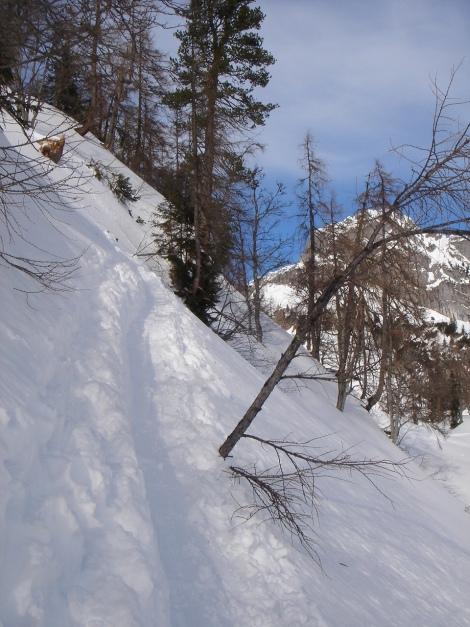 Foto: Manfred Karl / Ski Tour / Über die Gwechenberghütte auf den Sonntagskogel / Eine der Steilstufen oberhalb der Gwechenberghütte / 30.01.2009 23:11:17