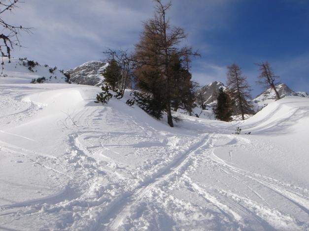 Foto: Manfred Karl / Ski Tour / Über die Gwechenberghütte auf den Sonntagskogel / 30.01.2009 23:10:43
