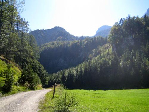 Foto: letsgoactive / Mountainbike Tour / Rund um den Schafberg - über den Falkenstein / Nur noch wenige Kurven und der letzte Anstieg zur Eisenau beginnt / 18.04.2007 16:00:17