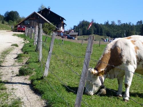 Foto: letsgoactive / Mountainbike Tour / Rund um den Schafberg - über den Falkenstein / Unbedingt einkehren auf der Eisenau / 18.04.2007 16:00:58