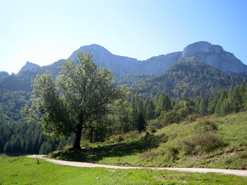 Foto: letsgoactive / Mountainbike Tour / Rund um den Schafberg - über den Falkenstein / Blick auf den Schafberg (Himmelsleiter) von der Eisenau / 18.04.2007 16:01:28