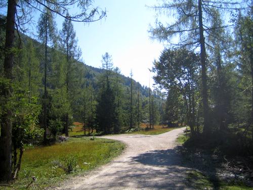 Foto: letsgoactive / Mountainbike Tour / Rund um den Schafberg - über den Falkenstein / Kreuzung Burgauklamm - Schwarzensee - Eisenau / 18.04.2007 16:02:00