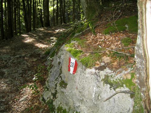 Foto: letsgoactive / Mountainbike Tour / Rund um den Schafberg - über den Falkenstein / Rechts rauf bei den Schwarzensee Gasthäusern der 28er / 18.04.2007 16:04:38