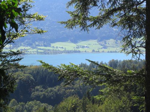 Foto: letsgoactive / Mountainbike Tour / Rund um den Schafberg - über den Falkenstein / Der erste Blick auf den Wolfgangsee oberhalb von Strobl / 18.04.2007 16:05:11
