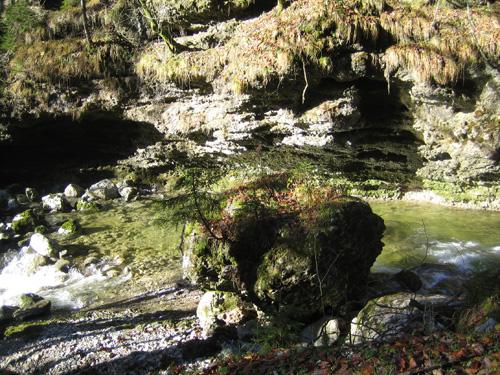 Foto: Hari M. / Mountainbiketour / Über die Glasenbachklamm auf die Fageralm / Glasenbachklamm / 28.12.2006 10:46:15