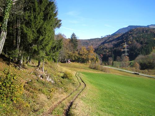 Foto: Hari M. / Mountainbiketour / Über die Glasenbachklamm auf die Fageralm / Verbindungsweg zur Schönalm / 28.12.2006 10:43:50