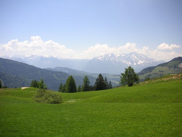 Foto: Salzprinz / Mountainbike Tour / Osterhorn-Route von Abtenau - Voglau / Auf der Bergalm; Blick zum Tennengebirge / 08.01.2007 23:16:15
