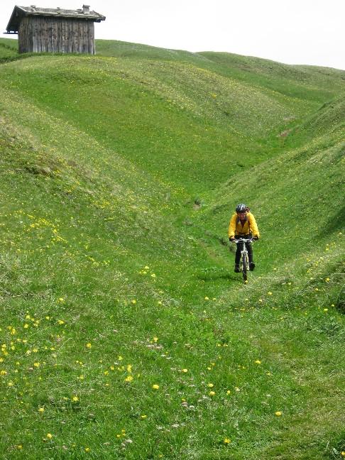 Foto: mucho / Mountainbike Tour / Von Trins auf den Blaser, 2241m / Single Trail durch die Blumen / 11.06.2007 14:45:42