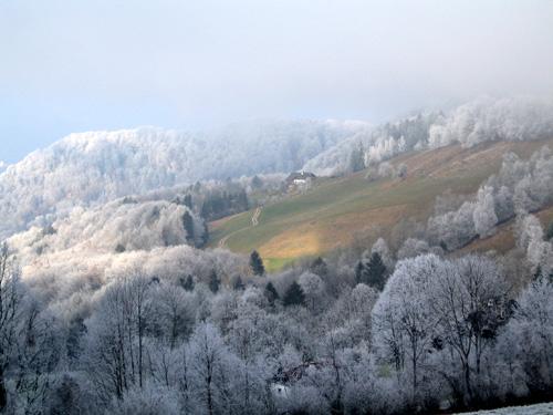 Foto: letsgoactive / Mountainbike Tour / Von Salzburg/Aigen auf den Gaisberg / Blick in Richtung Hotel Kobenzl auf halber Höhe zur Zistelalm / 05.01.2007 18:18:45