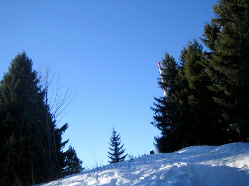 Foto: letsgoactive / Mountainbike Tour / Von Salzburg/Aigen auf den Gaisberg / Alternative Abfahrt abseits der Strasse / 05.01.2007 18:25:02