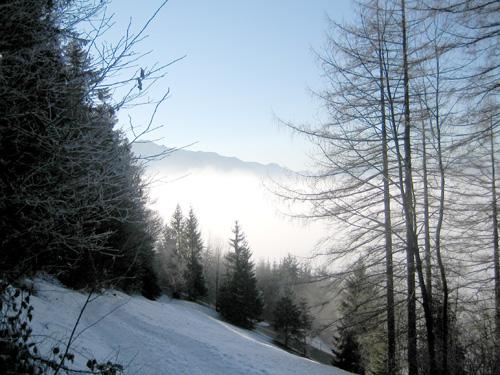 Foto: letsgoactive / Mountainbike Tour / Von Salzburg/Aigen auf den Gaisberg / Alternative Route über die Skiabfahrt ins Tal / 05.01.2007 18:26:16