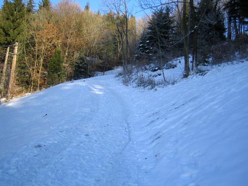 Foto: letsgoactive / Mountainbike Tour / Von Salzburg/Aigen auf den Gaisberg / Alternative Route über die Skiabfahrt ins Tal / 05.01.2007 18:26:34