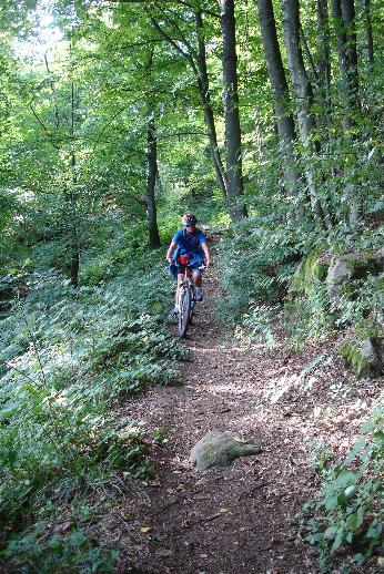Foto: Werner / Mountainbike Tour / Von Niederranna auf den Ameisberg (941m) und retour / 18.03.2007 12:01:10