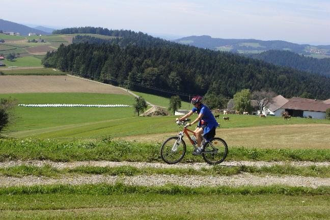 Foto: Werner / Mountainbike Tour / Von Niederranna auf den Ameisberg (941m) und retour / 18.03.2007 12:00:55
