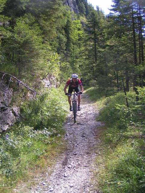Foto: Jürgen Lindlbauer / Mountainbike Tour / Von Reichraming rund um den Alpstein und auf die Ebenforstalm / 03.01.2007 15:43:18